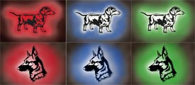 Hundemotiv 3D-Wandbilder mit Farbwechsel- und Dimmfunktion
