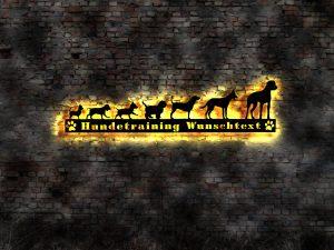 Hundetraining 3D LED Holz Wandbild