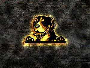 Schweizer Sennenhund 3D LED Leuchtschild aus Holz Schild Deko