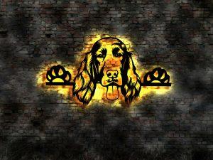 Irish Setter Hund 3D LED Leuchtschild aus Holz Schild Deko